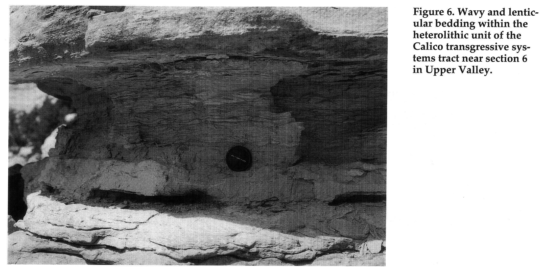 Lenticular Bedding
